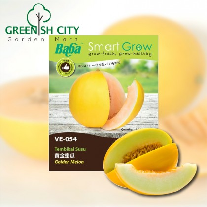 Baba Smart Grow Seeds: VE-054 Golden Melon Vege Seed Biji Benih Sayur Sayuran
