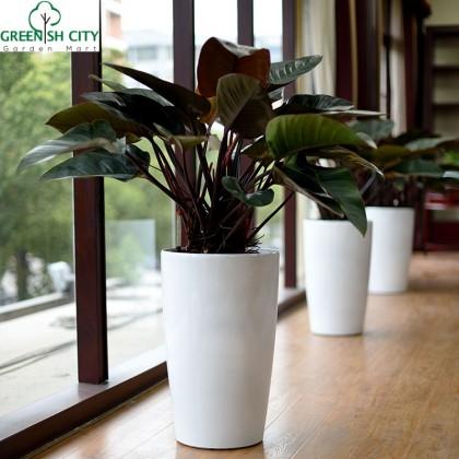 GNC - Self Watering Indoor Plastic Planter Pot - Model No 7001